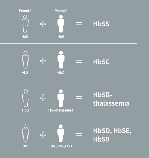 Types of sickle cell disease include HbSS, HbSC, HbS- thalassemia, HbSD, HbSE, and HbS0
